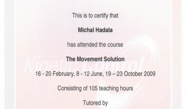The-Movement-Solution-2009